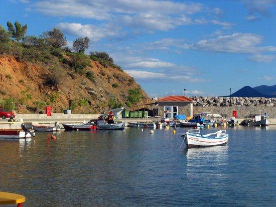 Stathopoulos Apartments: petit port de Sabatiki