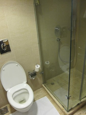 Svelte Hotel and Personal Suites: shower