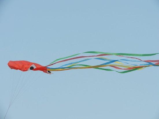 Dalian People Square: Воздушный змей