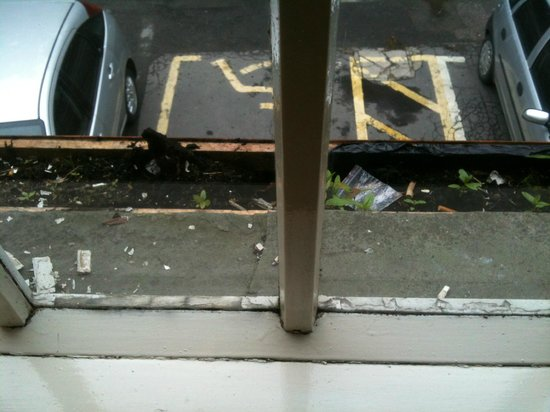 Spring Grove Tavern: view & rubbish outside crumbling window