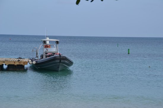Grenada Seafaris : The boat