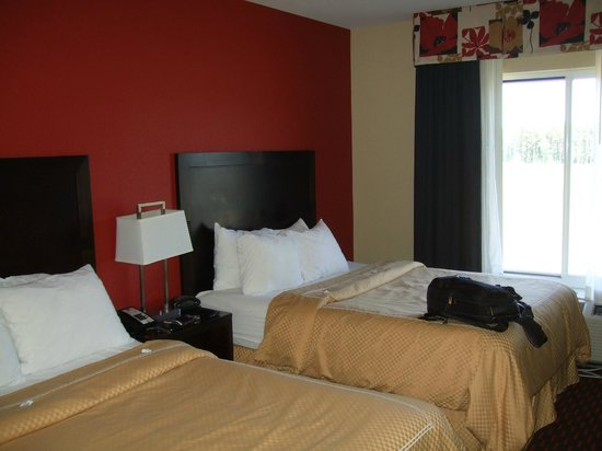 Comfort Suites Florence : Twin bed.