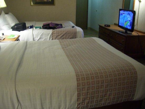 La Quinta Inn & Suites South Burlington : comfie bed and smart tV