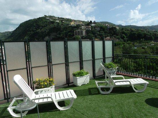 Majestic Palace Hotel: Terraza