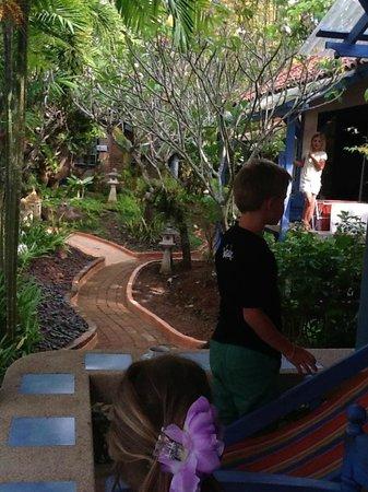 Ao Chalong Villa & Spa : Stier mellem bungalows