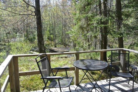 Acadia Cottages : Vue sur l'étang