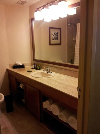 Embassy Suites by Hilton San Antonio Airport : bathrooms were spotless and well stocked
