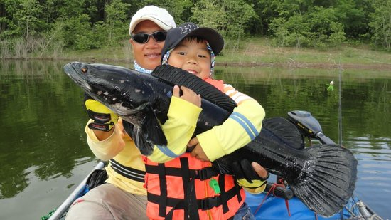 Big Game Fishing Adventure Tour - Private Tours: Charcoal Giant Snakehead