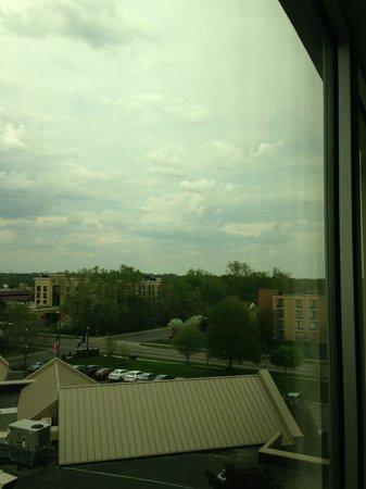 شيراتون آن أربور هوتل: View from my room
