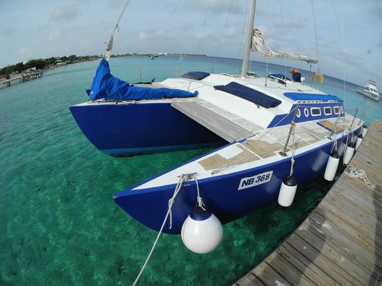 Woodwind Sailing & Guided Snorkel: The Woodwind