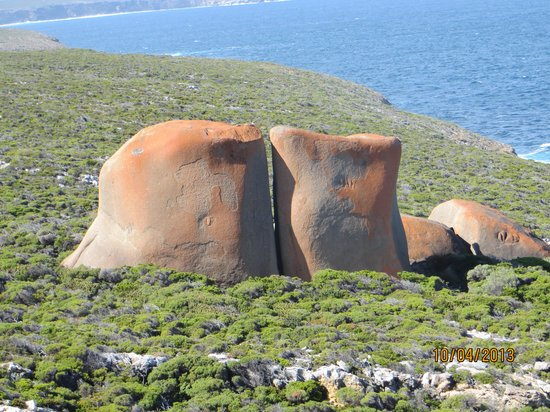 Kangaroo Island Odysseys: rock