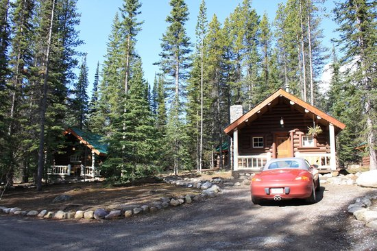 Storm Mountain Lodge & Cabins: Grounds