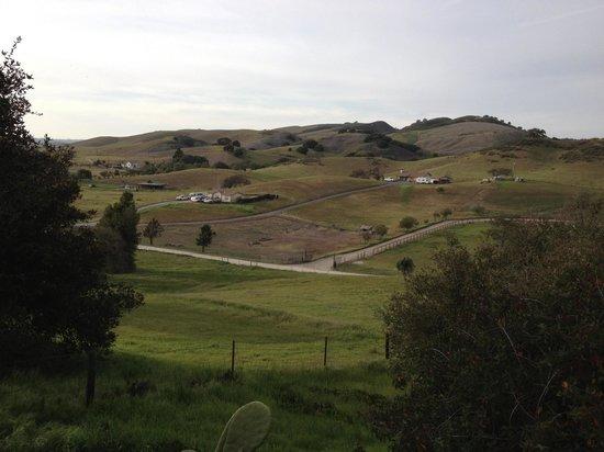 The Skyview Motel: La vista dal motel