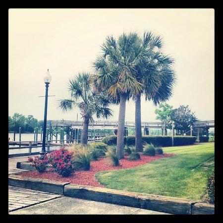 BEST WESTERN PLUS Coastline Inn: Loved the grounds!