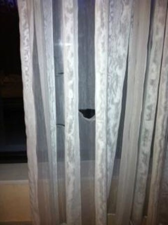Quality Inn Revere: Rips in curtains