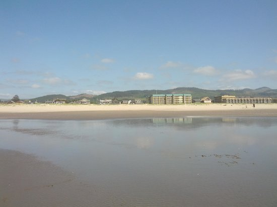 Best Western Ocean View Resort: on the beach looking back at the hotel