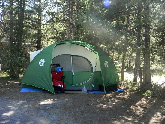 Grant Village Campground: Campsite