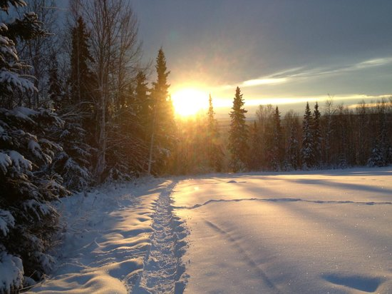 A Taste of Alaska Lodge: Heading out SnowShoeing on Christmas!