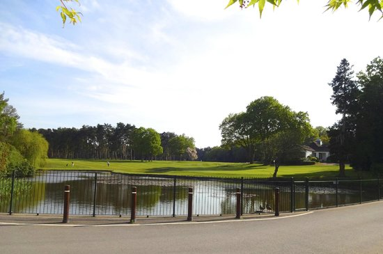 Fordwater: view from house