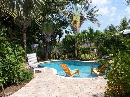 The Cabanas Guesthouse & Spa: la piscine à coté du jacuzzi