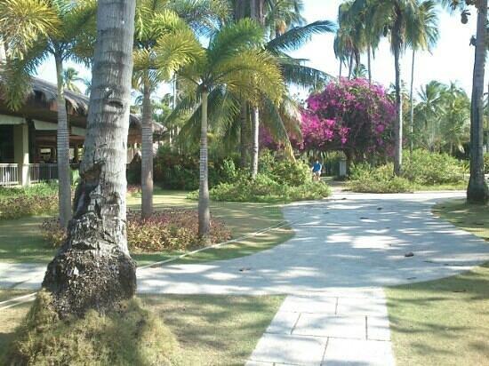 Dos Palmas Island Resort & Spa: the resort's ground