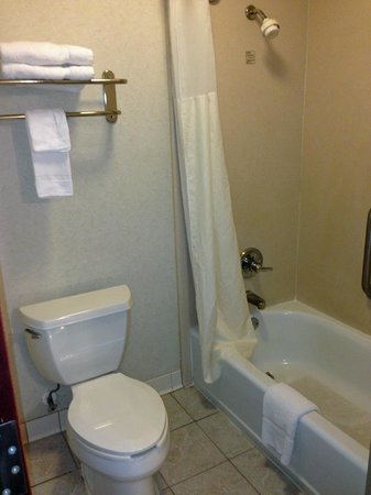 Comfort Inn & Suites: bath