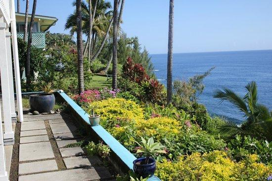 Hale Kai Hawaii Bed & Breakfast: View from terrace