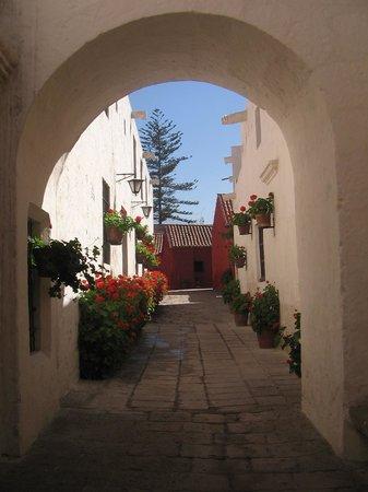 Hospedaje Turismo Caith : Arequipa