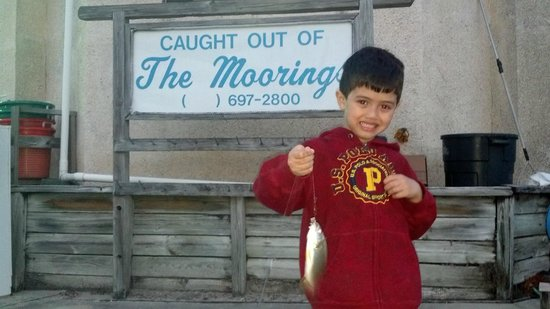 The Moorings at Carrabelle: We always catch fish of all sizes. Not to mention the crabs!