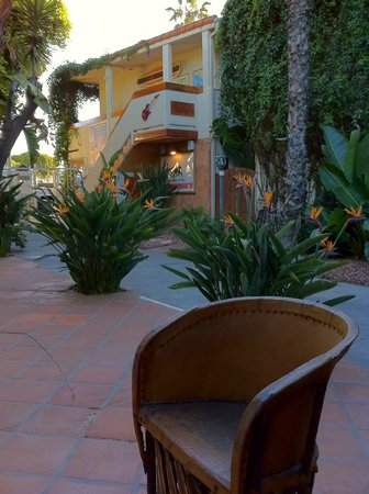 The Hotel California: Courtyard