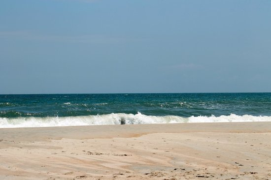 Huntington Beach State Park: Beautiful quiet beach