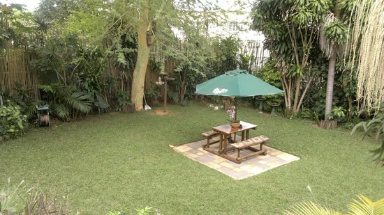 Acorn B&B in Durban: View Of the Lawn From the dinning area