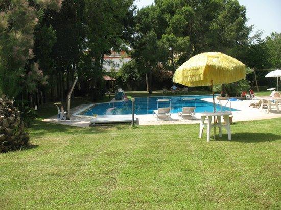 B&B Villa Maria: giardino del B&B