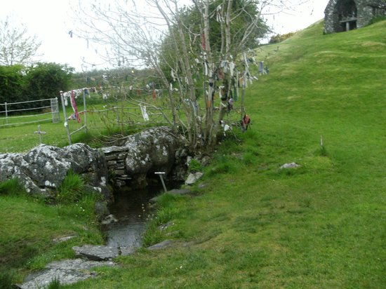 Beautiful Meath Tours: A fairy Tree at The Holy well of ST.Kiernan Just outside Kells in CO.MEATH..
