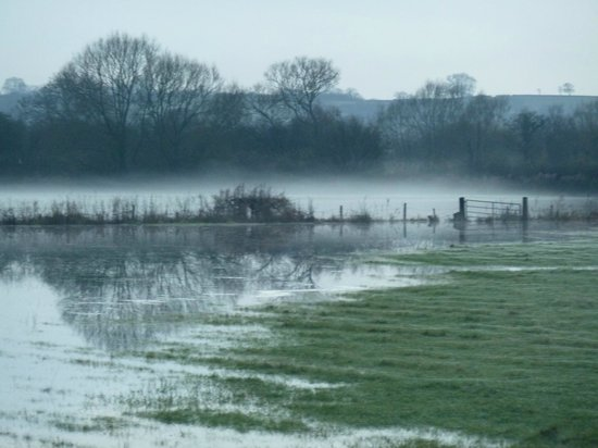 Somerset, UK: Floods and mist