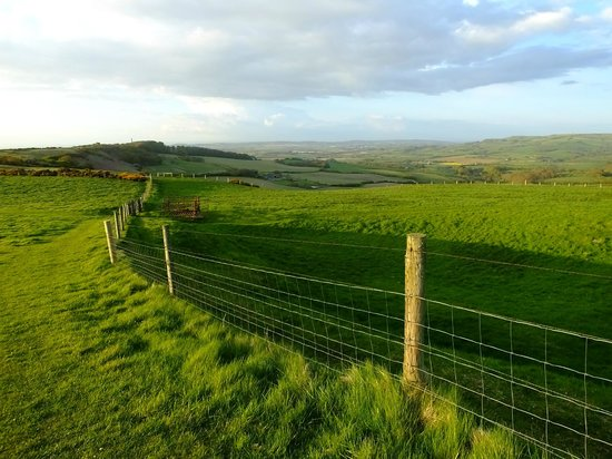 Hermitage Court Farm: A walk to Niton produced this view