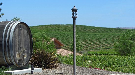 Grapeline Wine Tours, Paso Robles: This picture is taken at Pear Valley Vineyards