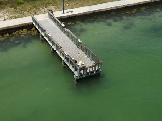 Sand Key Park: Fishing dock- no charge to fish