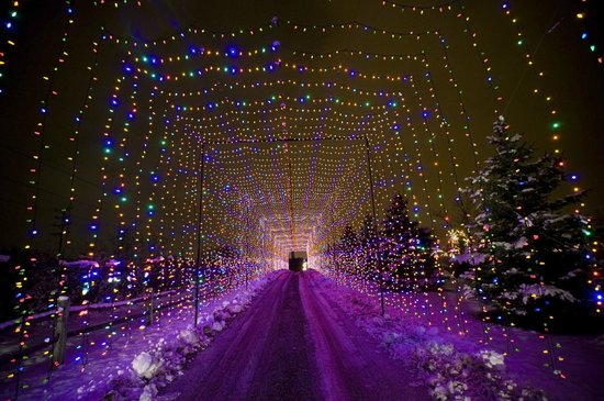 images of the country springs hotel hotel pictures - Country Springs Christmas Lights