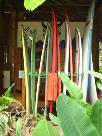 Pranamar Villas and Yoga Retreat : Surf, surf, surf while you're in Costa Rica!