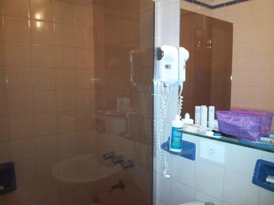 Aspen Suites Hotel: Baño