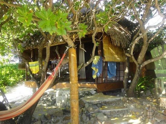 Green Lodge: le faré plage