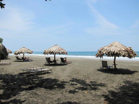 Hotel Banana Azul: Beach with umbrellas