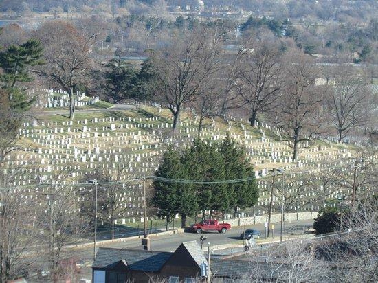 Sheraton Pentagon City Hotel: Arlington Cemetery