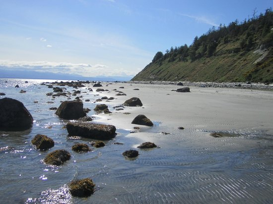 The Savary Island Resort: Beautiful beaches