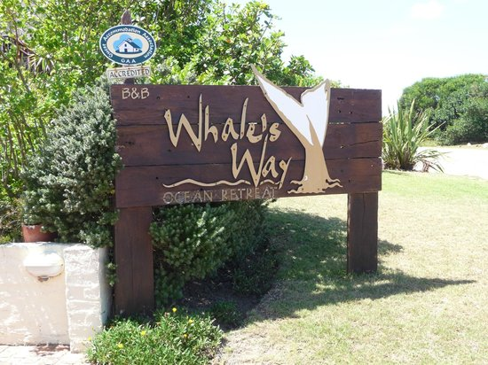 Whale's Way Ocean Retreat: I