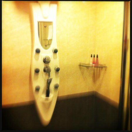 Rashmi's Plaza Hotel: Shower Unit - fancy but not really practical