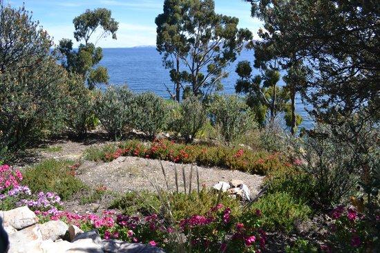Isla Suasi Hotel : Jardines, un olor a flores delicioso!!! El olor del Eucalipto, las rosas y la Muña increíbles!!!