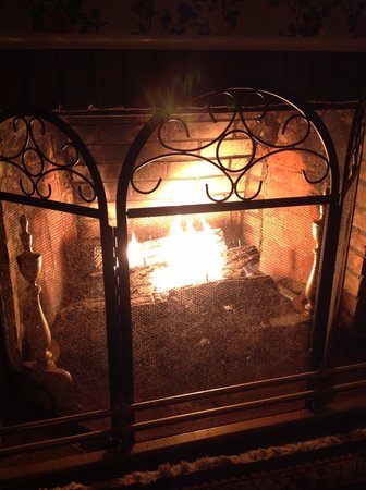 The Red Hook Country  Inn: Parlor Fireplace