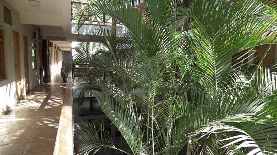 Casa Andina Standard Nasca: Inside the hotel